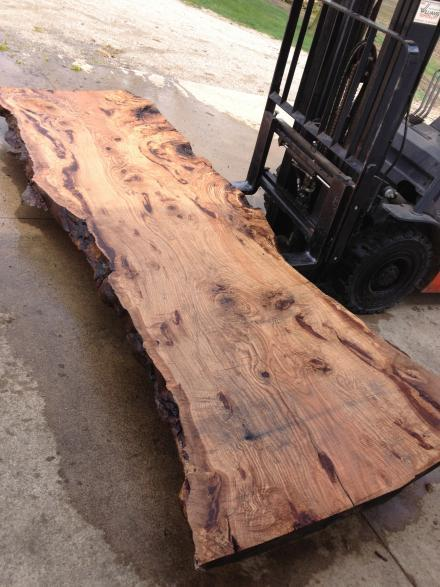 Curly Walnut Wood Slab